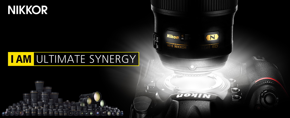 NIKKOR : ULTIMATE SYNERGY