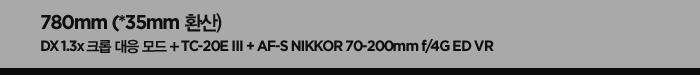780mm(*35mm 환산). dx 1.3x 크롭 대응 모드 + tc-20e ⅲ + af-s nikkor 70-200mm f/4g ed vr