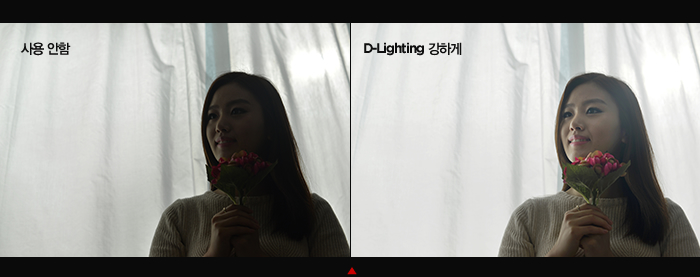 D-Lighting 기능 적용 사진