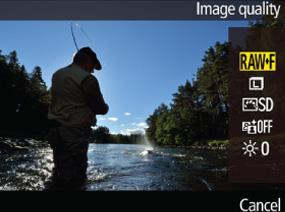 라이브 뷰 촬영 이미지에 각종 항목이 겹쳐서 표시된 액정 모니터 이미지