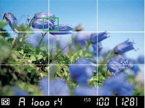 3분할 격자선 표기 기능이 실행되고 있는 액정 모니터 이미지